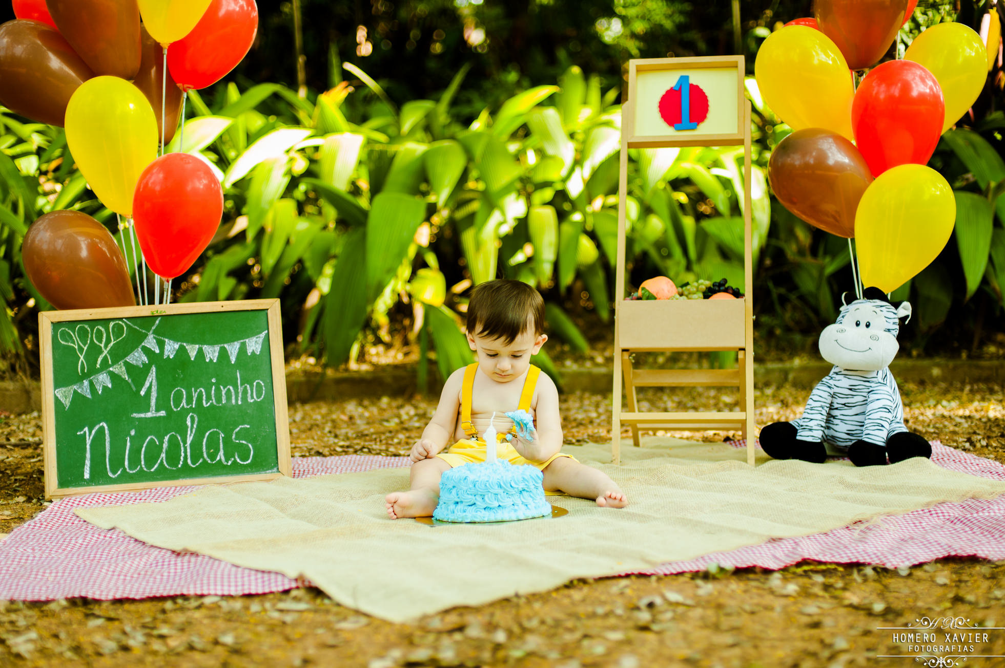 fotografia smash the cake em parque em BH