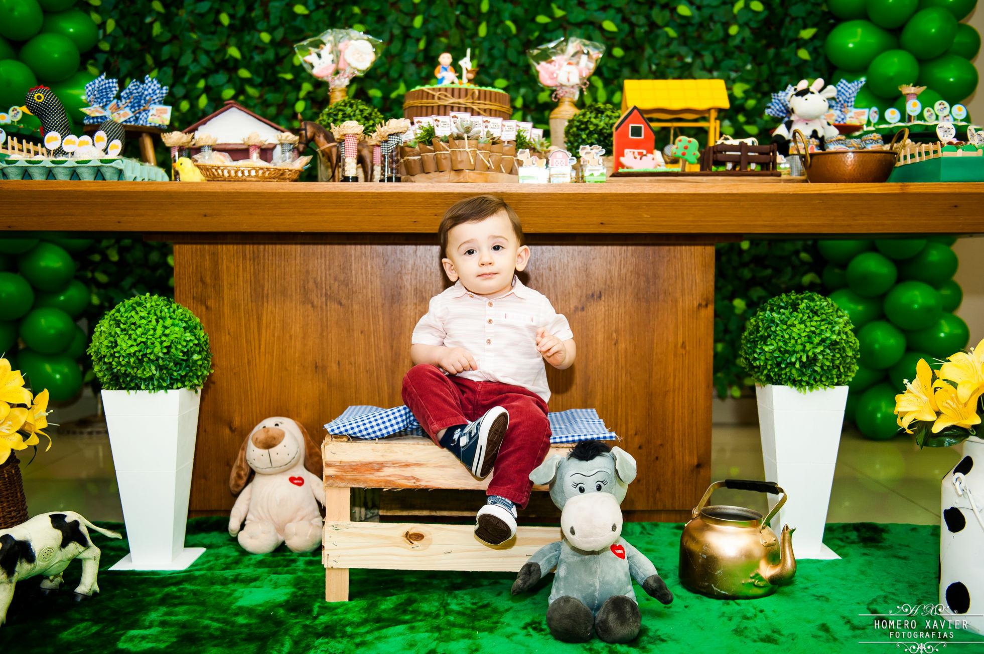fotografia festa infantil fazendinha BH